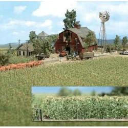 BUSCH 1202. H0 Campo de maiz