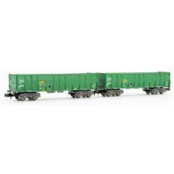 ARNOLD 6412. N Set 2 vagones RENFE Ealos verdes.