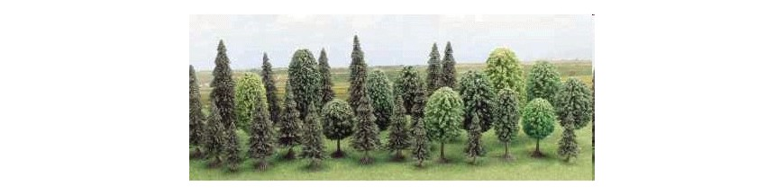 Arbustos y Árboles
