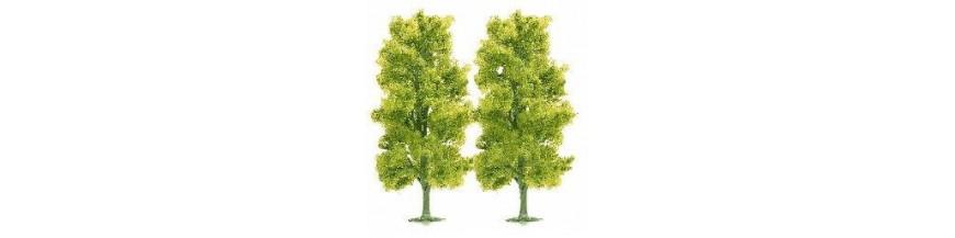 Bushes & trees